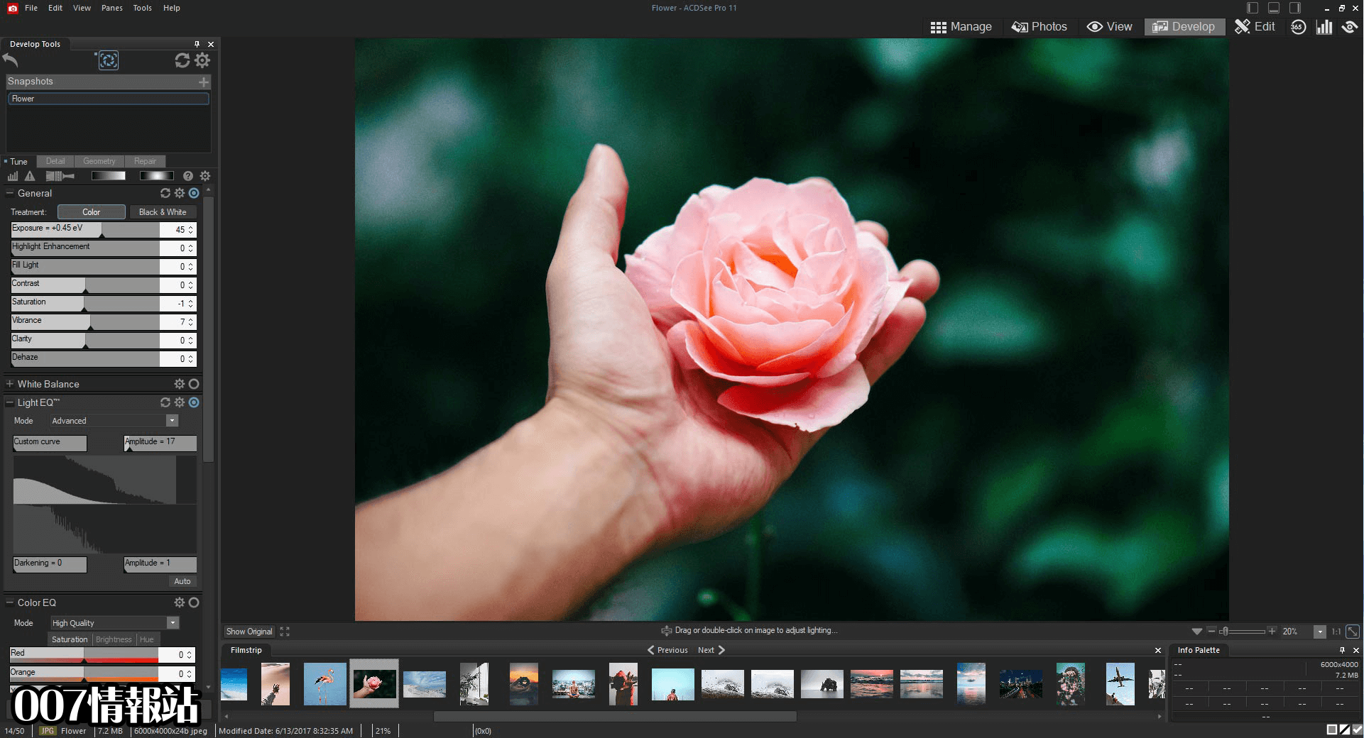 ACDSee Photo Studio Professional (32-bit) Screenshot 2