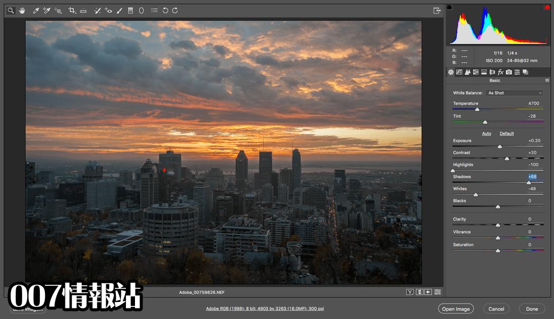 Adobe Camera Raw Screenshot 1