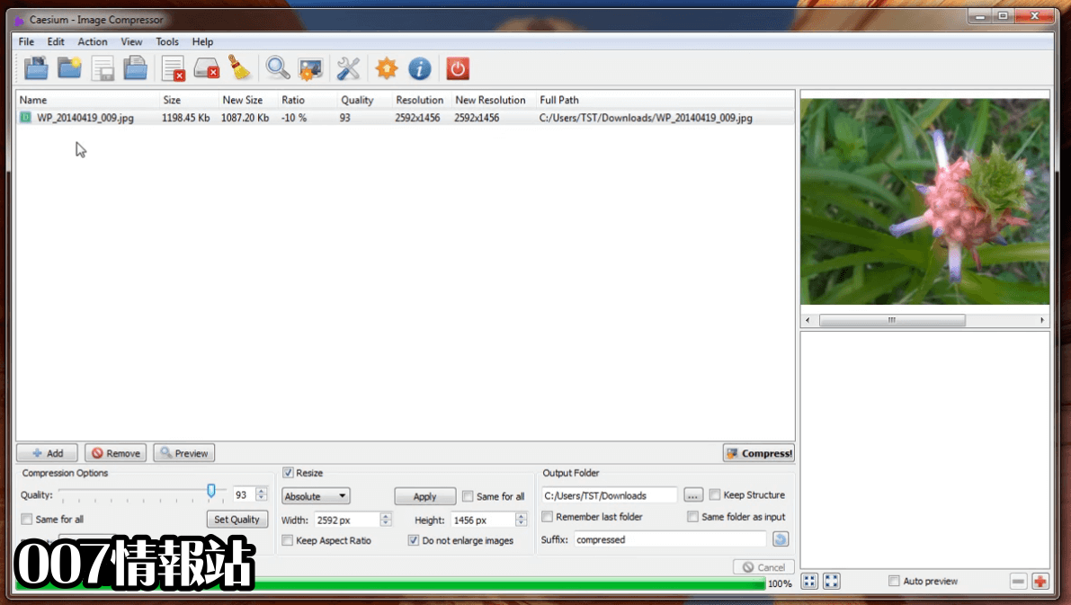 Caesium Image Compressor Screenshot 2