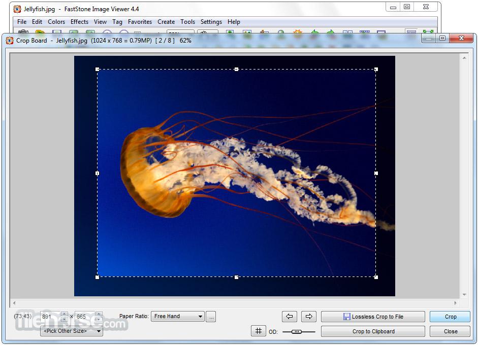 FastStone Image Viewer Screenshot 2