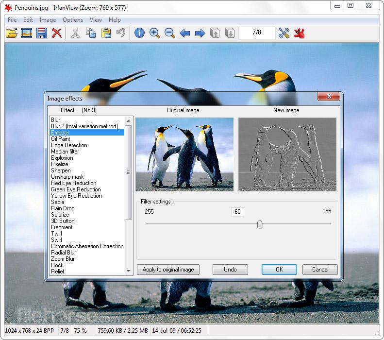 IrfanView (64-bit) Screenshot 3