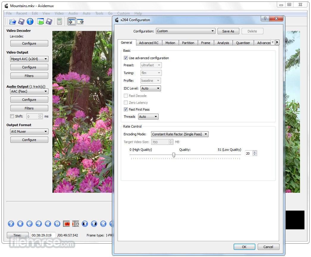 Avidemux (64-bit) Screenshot 3